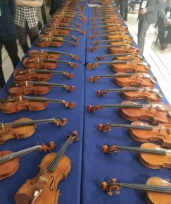 VIOLIN MAKING 2017